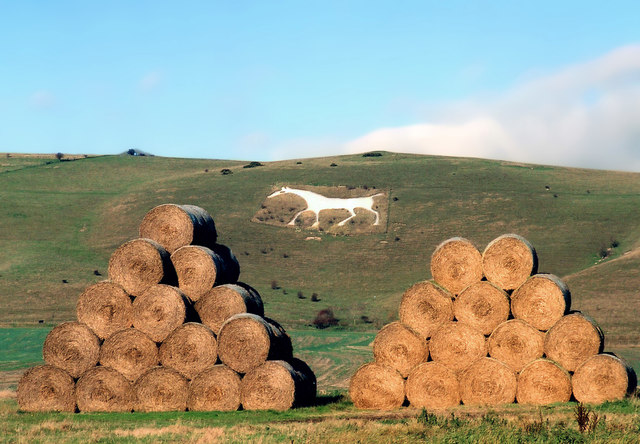 Bales and White Horse