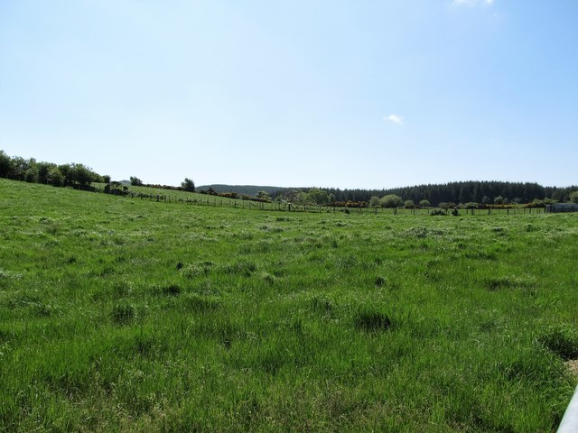 Cultivated grassland along the Whiterock Road, Ballintemple TD