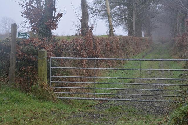 Mid Devon : Track