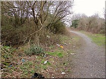 SX9066 : Litter, Nightingale Park by Derek Harper