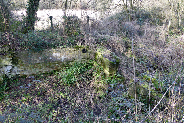 Remains of Twyford End Lock, Itchen Navigation