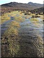 SM7328 : Wetlands at the Foot of Carn Llidi by Alan Hughes