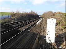 TQ5365 : Looking towards Eynsford Tunnel by Marathon