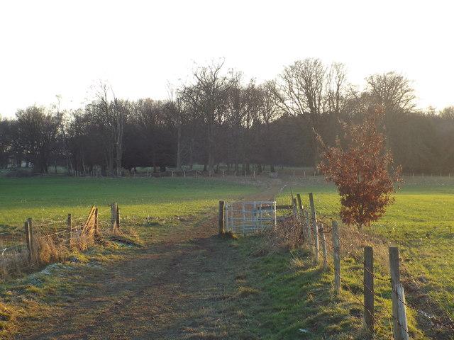 Greensand Way, near Westerham