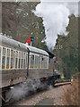 SX7863 : Staverton departure - South Devon Railway by Chris Allen