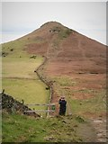 NZ5812 : Cleveland Way to Roseberry Topping by Gordon Hatton