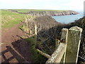 SM8003 : Pembrokeshire Coast Path by PAUL FARMER