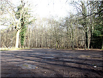 TG2202 : Car park at Dunston Common by Evelyn Simak