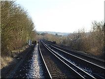 TQ5365 : Looking towards Eynsford Viaduct by Marathon