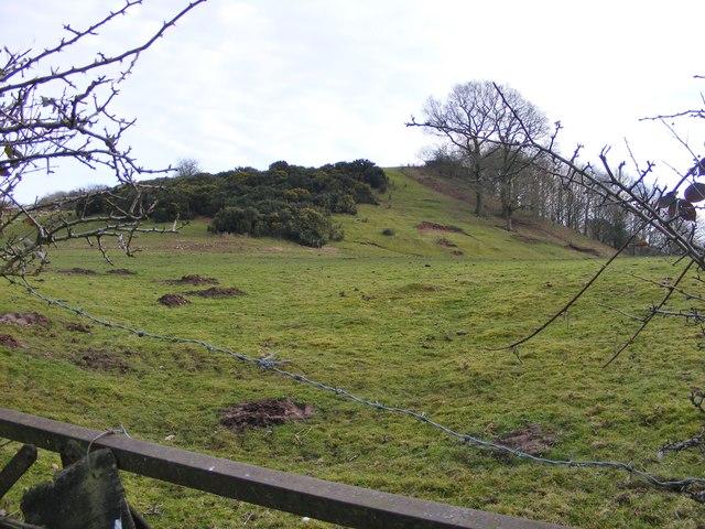 Blazebank View