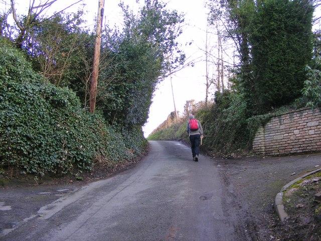 Showell Lane Hill