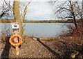 SU8887 : Spade Oak Lake by Des Blenkinsopp