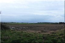 NS3530 : Farmland near Troon by Billy McCrorie