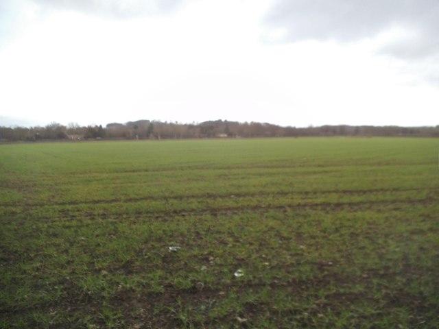 Himley Field