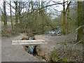 TQ2897 : Footbridge in Trent Country Park by Robin Webster