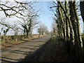 NY8112 : The road from Brough to Barras by Christine Johnstone
