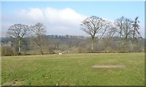 NY8013 : Farmland with trees, south-west of Park House by Christine Johnstone