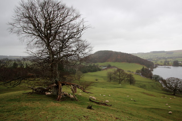 A wide angled view from the northern slopes of Ullswater