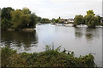 TQ0866 : Desborough Cut and River Thames by Philip Halling