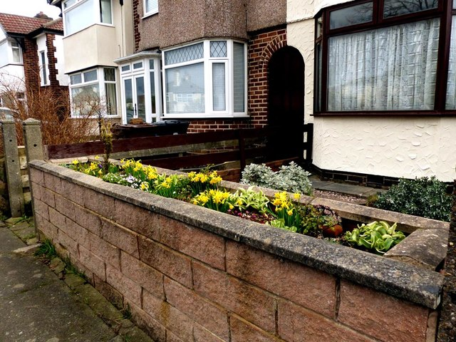 Colourful spring display on a wall in Dorbett Drive