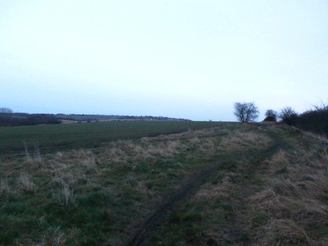 Path and Fields near Shafton