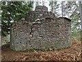 NH6167 : Round Gun Tower on Cat Hill by valenta