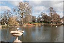 TQ1876 : Black Headed Gull, Kew Gardens by Christine Matthews