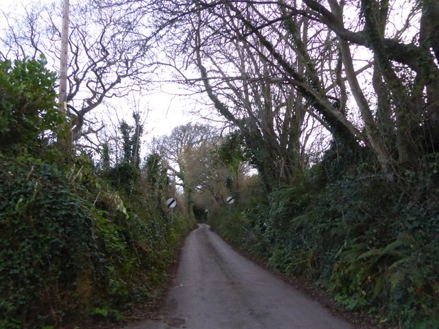 Derestriction signs in Short Lane, Ringmore