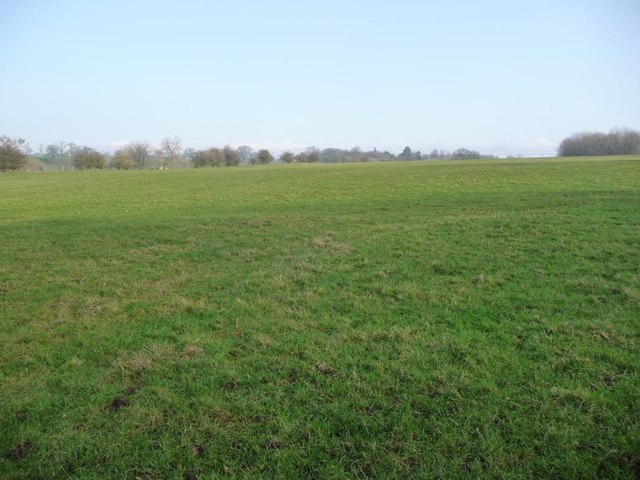 Field above the west bank of the River Eden