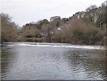 SX9192 : Weir on the Exe by Chris Allen
