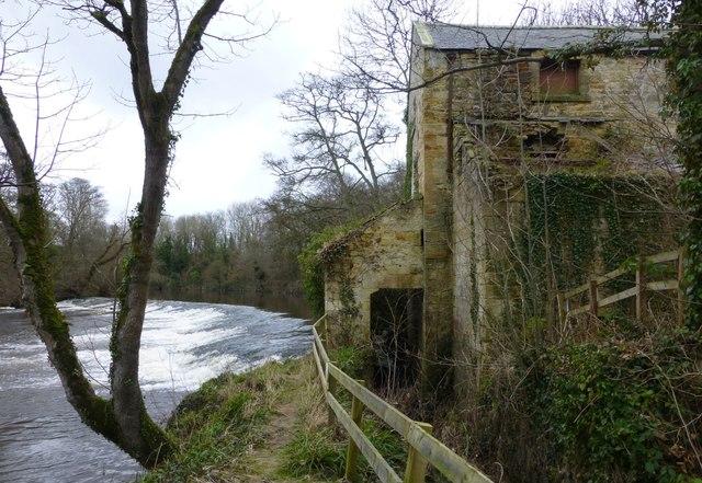 Guyzance Mill and weir