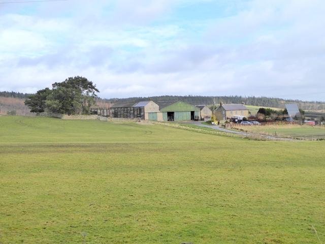 Frankham Fell Farm