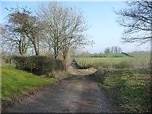 NY6220 : Hoggs Lane, heading north-west by Christine Johnstone