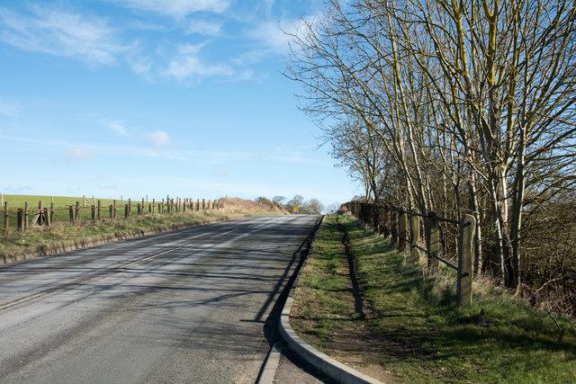 Minor road north-east of Pittington Bridge