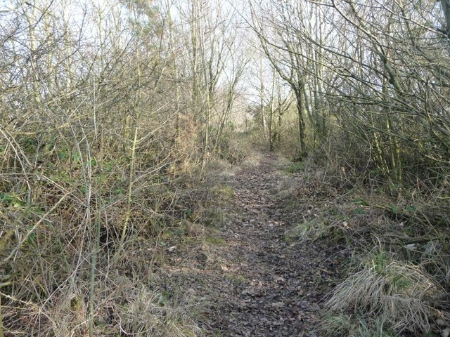 Public bridleway from King's Meaburn to Burwain Hall