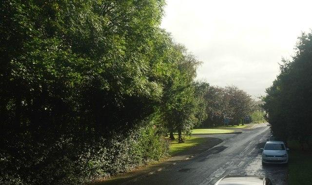Old Torrington Road, Barnstaple