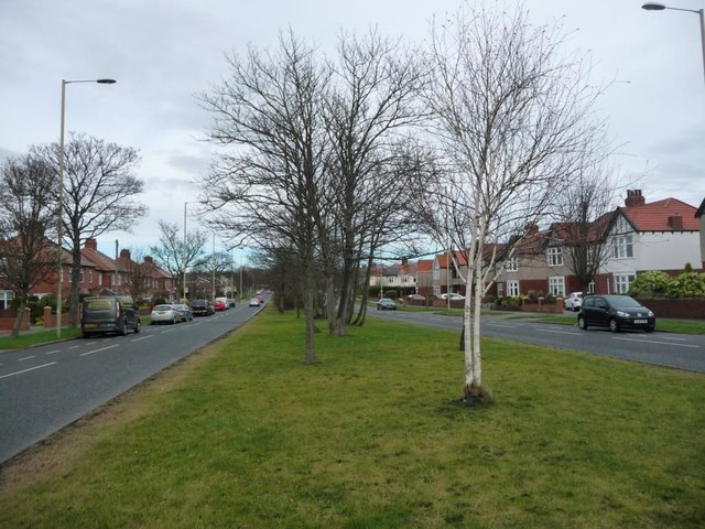 Central reservation, King George Road [A1018]