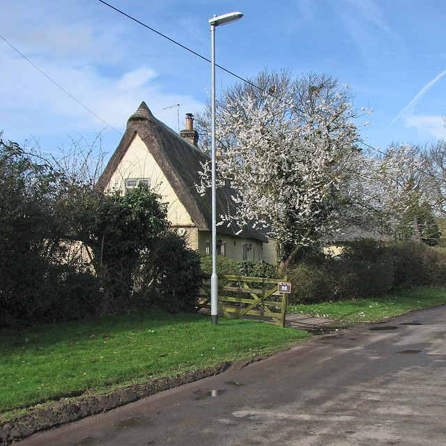 Stow-cum-Quy: blossom and The Old Well