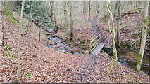 NY8563 : Footbridge over Threepwood Burn in Dinnetley Wood by Clive Nicholson