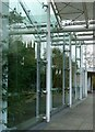 SP3265 : Reflections in The Glasshouse by Alan Murray-Rust