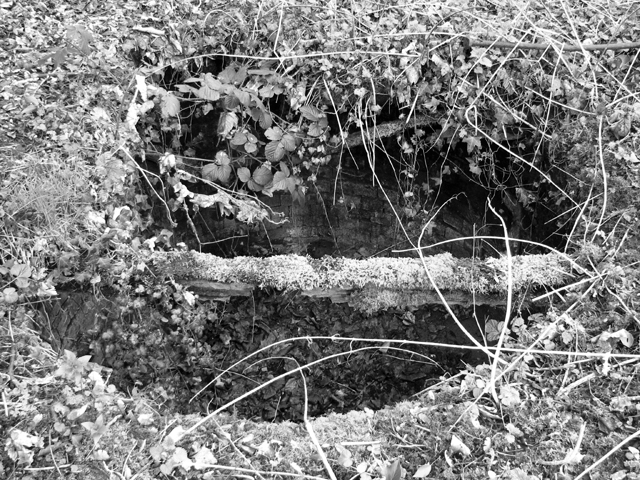 A disused cesspit