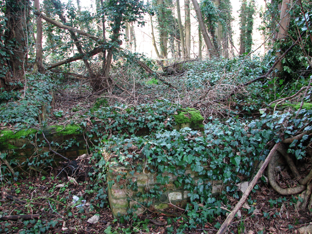 View across an old hut foundation