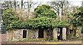 J2865 : Derelict cottage, Tullynacross near Lisburn (March 2017) by Albert Bridge