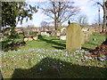 SO8299 : St Chads Churchyard by Gordon Griffiths