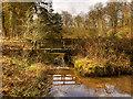 SJ8382 : Bridge over Leat at Quarry Bank Mill by David Dixon