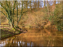 SJ8382 : River Bollin above the Weir at Quarry Bank Mill by David Dixon