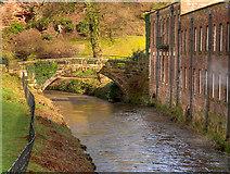 SJ8383 : River Bollin, Pack Bridge at Quarry Bank Mill by David Dixon