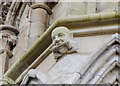 SK9771 : Scaffolder grotesque on Lincoln Cathedral by Julian P Guffogg
