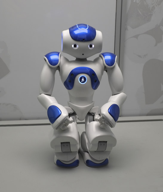 Image result for autism robot