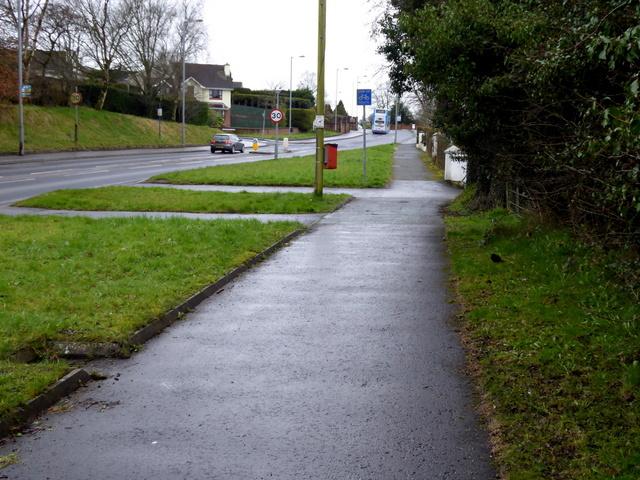 Donaghanie Road, Cranny
